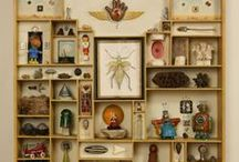 Curiosity/oddity/cabinet of wonder/collection