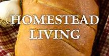 ~ Homestead Living ~ / Homesteading is a lifestyle of self-sufficiency that includes growing and preserving your own food, raising livestock, and other methods to support a sustainable living.