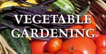 ~Vegetable Gardening / All about vegetable gardening, from planning the garden, to building your soil, and selecting vegetables to grow.