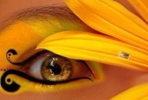 ***Eyes of Color*** / Oh What A Colorful World!!