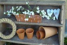 Moje zahrada / My gardens