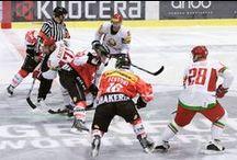 Sport Events / Sport Events in der ganzen Schweiz - Fussball, Eishockey, Tennis, Reiten und viele weitere Veranstaltungen
