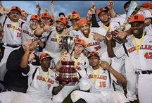 Dutch national team / Photos from the Dutch national baseballteam. World champions in 2011.