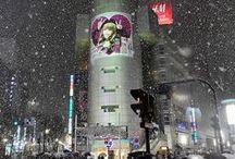 Luv Japan