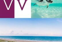 """Become A Viner /  Viners are members of the Vero Beach Community who are """"in the Know."""" They frequently share their community knowledge on Vero Vine, and are most important to its success."""