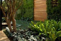 Ogród- oaza spokoju :)