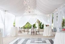 Ceiling & Wall Drapes