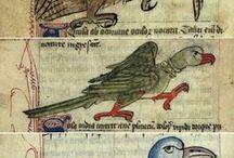 Grafikák (Európa) XIII.sz.-XVII.sz. / Kódexek, iniciálék, kártyák, életképek....