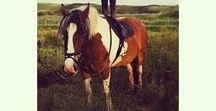 Emer / Emer loves outdoor adventures, travelling, horse riding, cooking and music festivals!