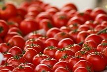 Tomaattikuvia