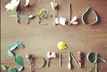 Spring Inspiration  & Floral / by Pretty Simple Style