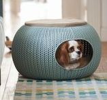 Curver PetLife / Because your pets deserve only the best.  http://www.curver.com/gbr/catalog_category/pets/