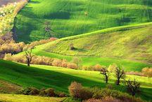 Le Marche / Le marche...dove puoi trovare tutto ciò che sogni: mare, colline, laghi, borghi, scorci, spiritualità, castelli, arte, storia, ottimi vini e arte culinaria, panorami, colori e bella gente