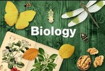 Biology / What are we made of? What about animals and plants? These hand-selected glogs from classrooms around the world are here to answer all the big questions about life science and anatomy with easy-to-digest information (see what we did there?) Follow the links to explore multimedia content and get inspired for biology classes!
