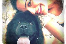 Preta, The Black Dog / The most beautiful black chow chow!