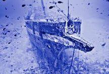 Shipwrecks / Shipwrecks