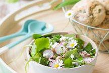 Frühlingskräuter & Rezepte