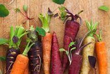Möhren - carrots