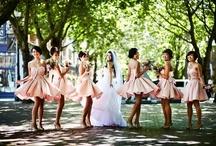 Weddings / by Shannon Raynor