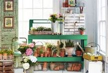 Shop inspiration / Inspiration and ideas for our little shop and greenhouse