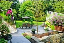 Spring Into Summer / Dive into summer and let creativity blossom in your garden and yard this year!