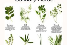 Herbs / Natural remedies are Gods remedies