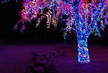 Christmas / by Chanel Marshall