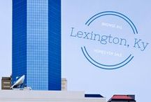 ★Local Lexingtonian★ / What's what about town in Lexington-Fayette, KY.  Just moved here?  Want something cool to do?  This board keeps track of the best tours, entertainment, dining, and events here in Lexington. #ShareTheLex #KentuckyHome #Lexington
