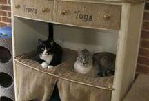 For cats ! / 猫達が幸せに暮らすためのグッズとかDIYとか