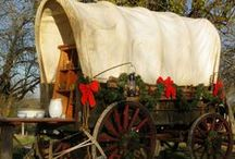 Rustic Christmas, Idea's, Decorations / by Pam Childress