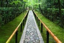 Huerto ecológico / Todo sobre permacultura, huerto ecológico, diseños de huertos y jardines, trucos y herramientas.