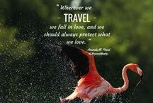 Travel in Words / by TravelSafe
