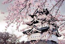 Japan '16