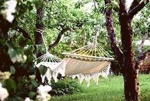 Oasis ▲ garden & outdoor