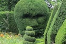 Gardens / Take a pew :)