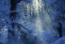 Υπέροχες Φωτογραφίες / The magic of winter