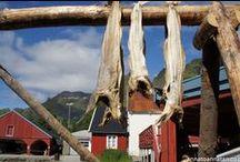 Norwegia / Znajdują się tu zdjęcia nie zamieszczone na blogu lecz z naszej podróży do Norwegii :)