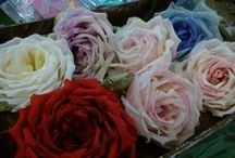 silk flowers / fiori di stoffa