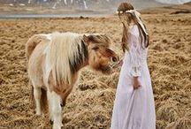 Tierische Hochzeitsbegleiter