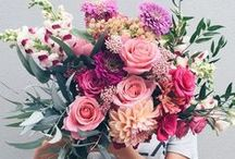 BEAUTIFUL BLOOMS / Flowers I Arrangements I Floral Inspiration I Colour I Delicate Blooms