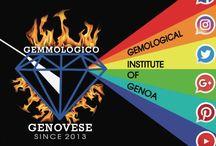 ISTITUTO GEMMOLOGICO GENOVESE / Corsi di gemmologia , Corsi sul Diamante , perizie accurate , apertura cassette di sicurezza , Gemme certificate
