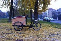 TrikeGo / TrikeGo - RiEvoluzione in movimento. Cargobike 2013