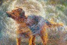 Πίνακες ζωγραφικής /Paintings! / Με λάδι. ακρυλικά. υδατογραφίες.........