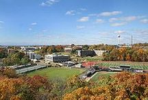 Jersey U / Colleges and Universities in New Jersey / by The Real Blogger of New Jersey