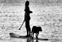 Dog daze / by Lara Shell