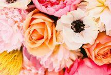 Les Fleurs / by Camille Bernard