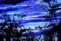 Blue Passion 2 / by Andrea Williams