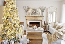 Christmas Trees / by Andrea Williams