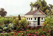 Chicken Coop Cottages