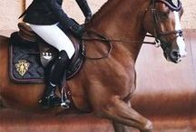 r i d e   o n / for those with an equestrian heart